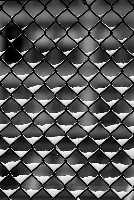 fence by presentandcorrect.com