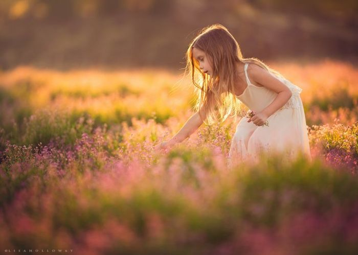lisa-holloway